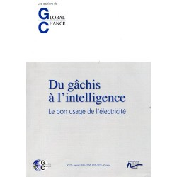 "Les cahiers de Global Chance  ""Du gâchis à l'intelligence """